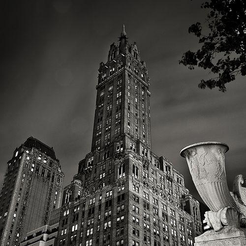 Shelters New York City Batman Animal Nyc