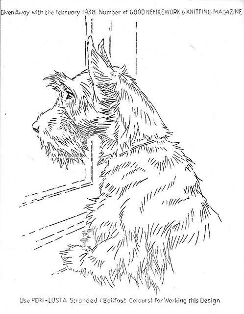 Scottie at window | Dog pattern, Dog and Patterns