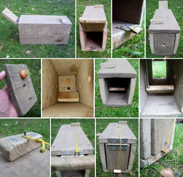 Wooden Box Rabbit Trap Processing Game Rabbit Traps Rabbit