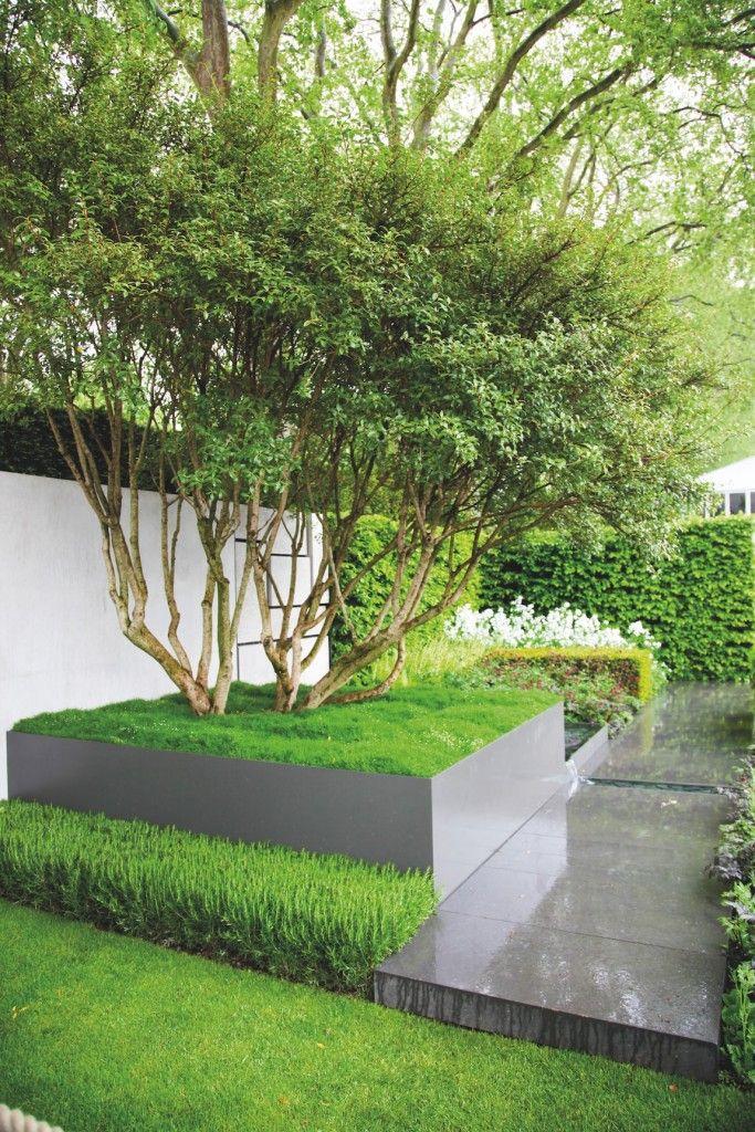 Suivez La Ligne Amenagement Jardin Jardin Contemporain Et Arbre