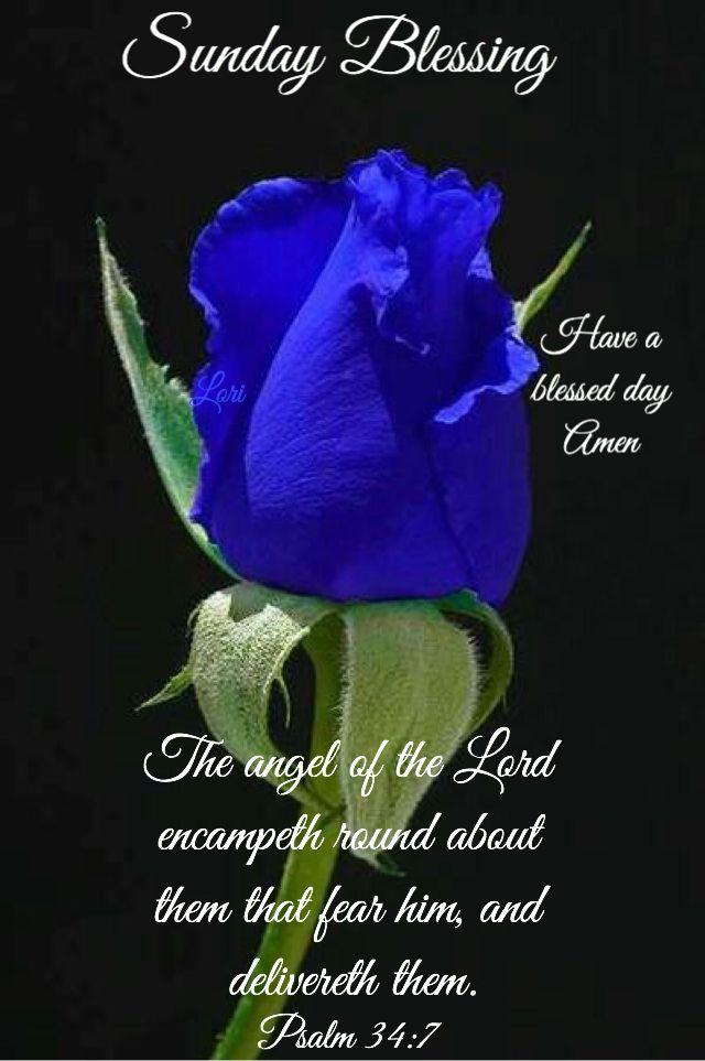 Sunday blessingsj sunday blessings pinterest blessings sunday blessingsj sunday blessings pinterest blessings sunday quotes and sunday greetings m4hsunfo