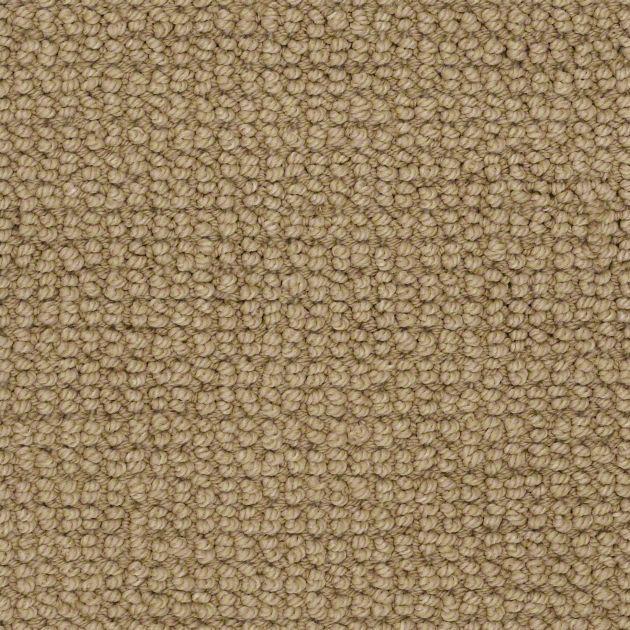 Carpet Carpeting Berber Texture More Shaw Carpet Where To Buy Carpet Classic Carpets