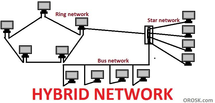 Bus Topology In Urdu With Images Topology What Is Network Urdu