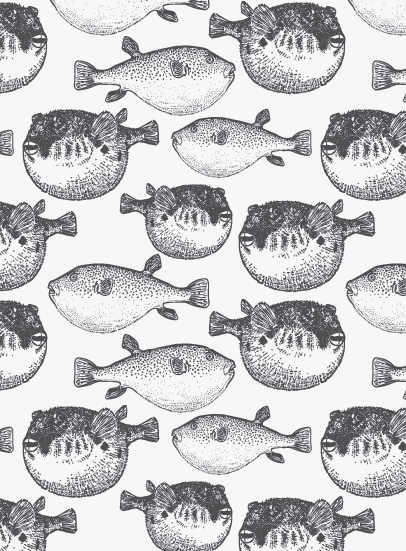 Puffer Fish Wallpaper Copyright Dmg Illustration Fish Illustration Fish Wallpaper Children Illustration