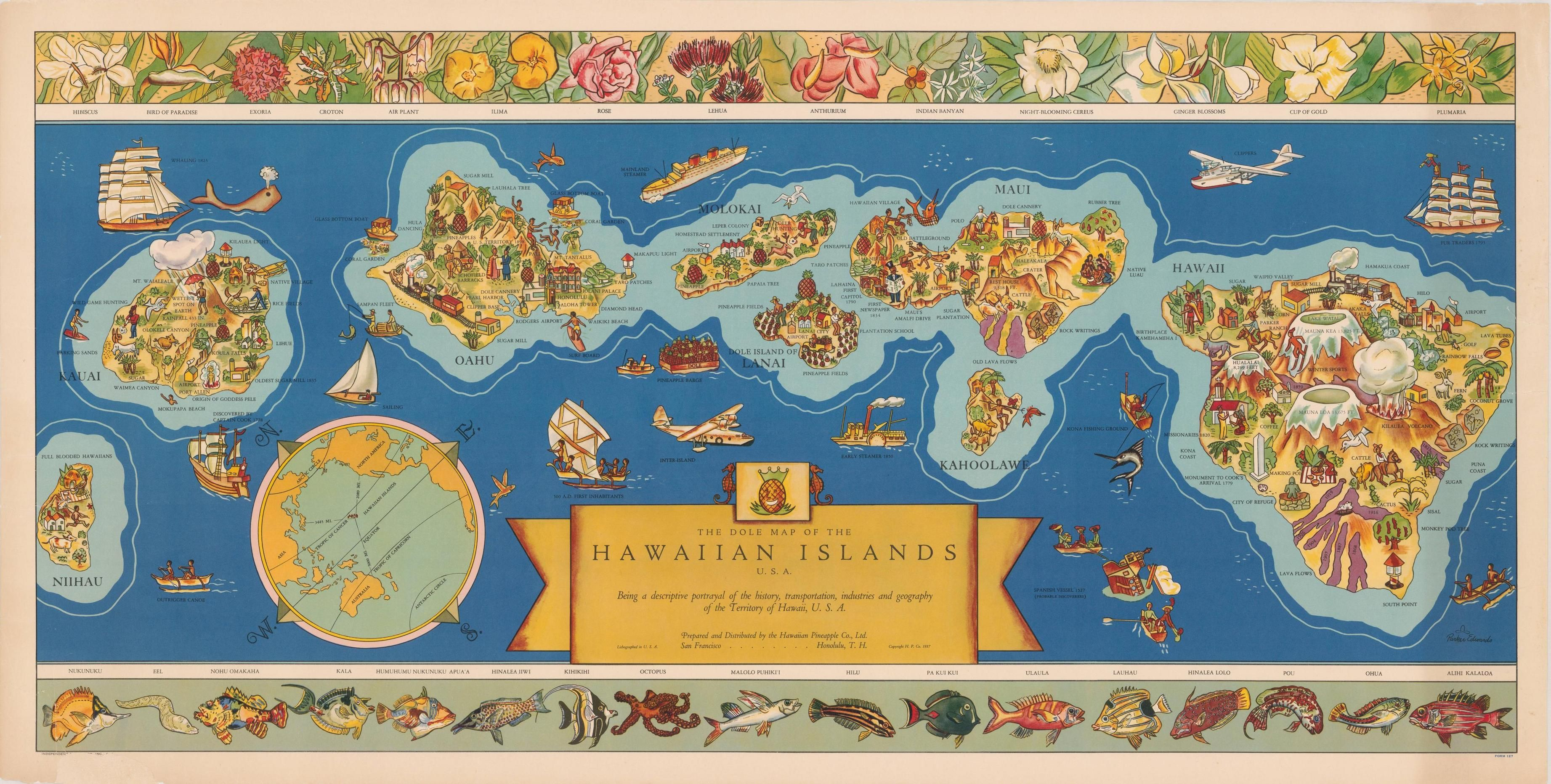 Dole Map of the Hawaiian Islands (1937) Map of hawaii