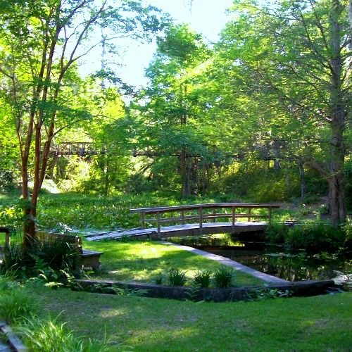 Ravine Gardens State Park in Palatka, Florida. About a block from ...