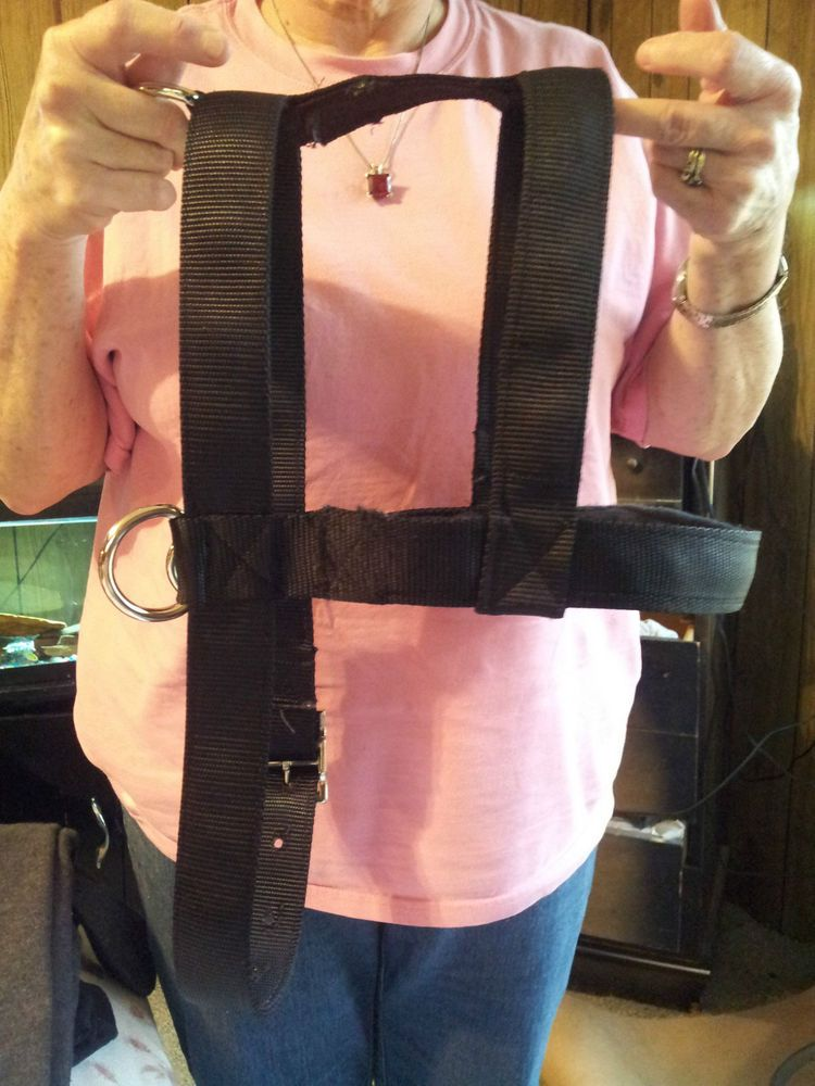 how to measure a dog for a pulling harness