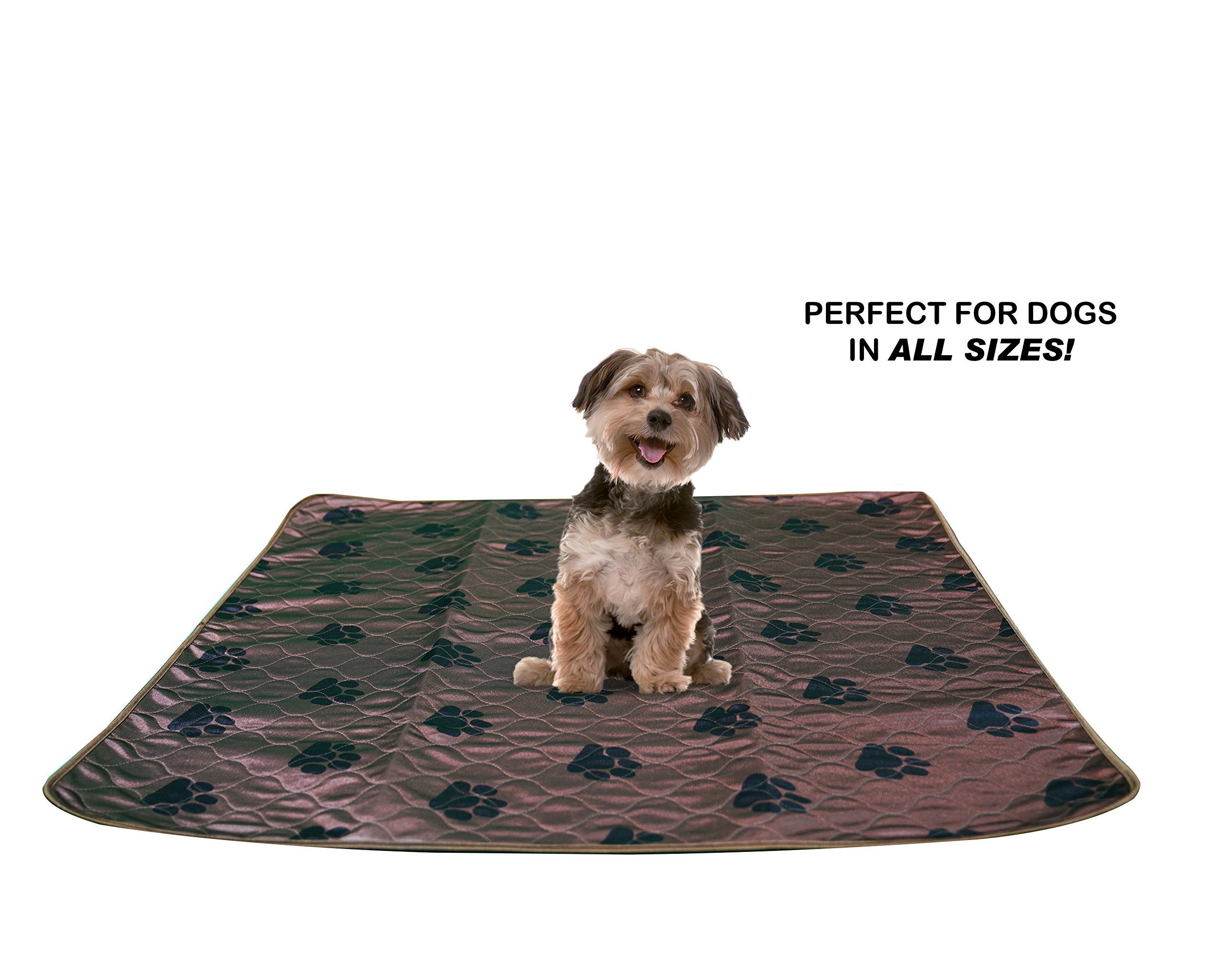 2 Pack Washable Pee Pads For Dogs Pets Puppy Housebreakingtraining