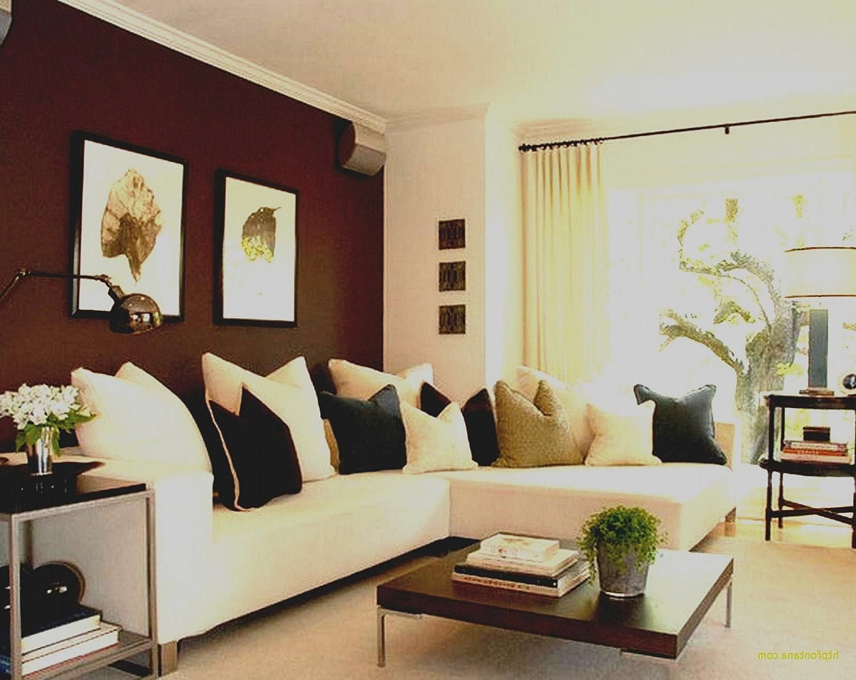 beautiful living room paint ideas with brown furniture on small laundry room paint ideas with brown furniture colors id=18222