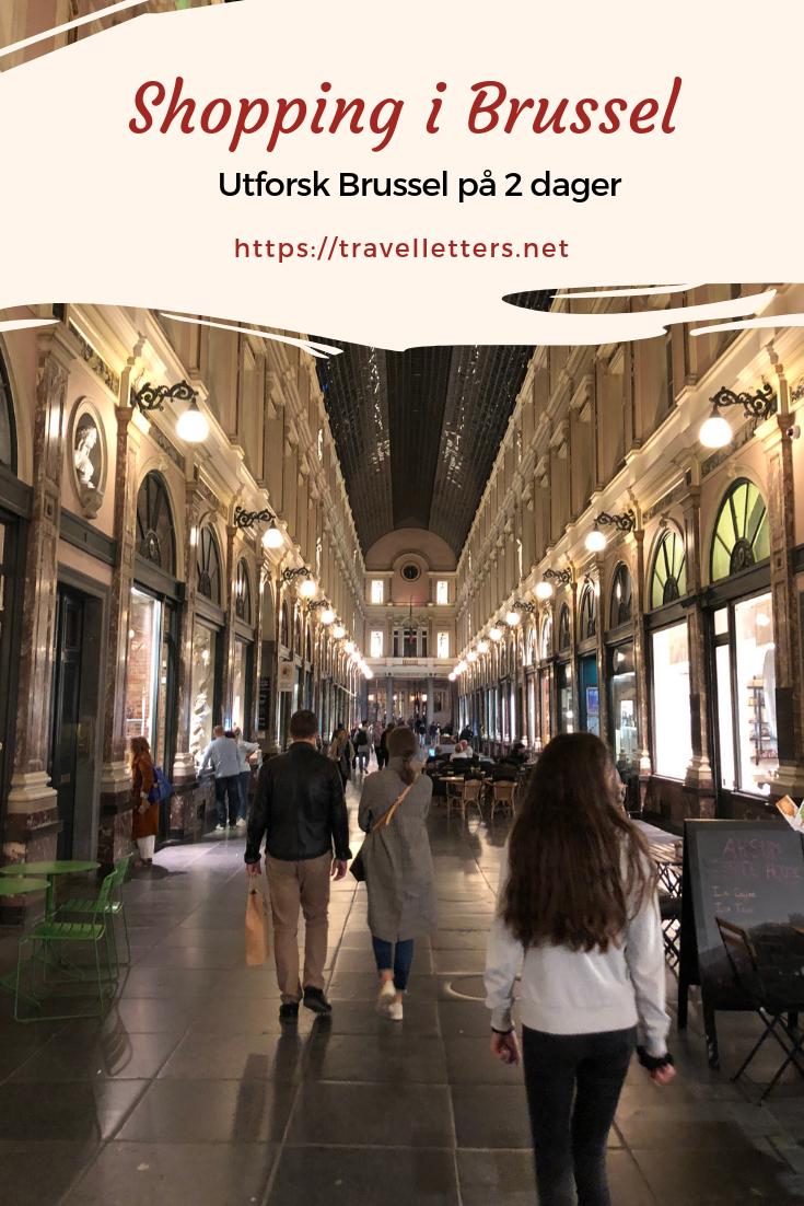 Storbyferie I Europa Ting A Gjore I Brussel Europas Glemte Hovedstad Reise Jentetur Reisetips
