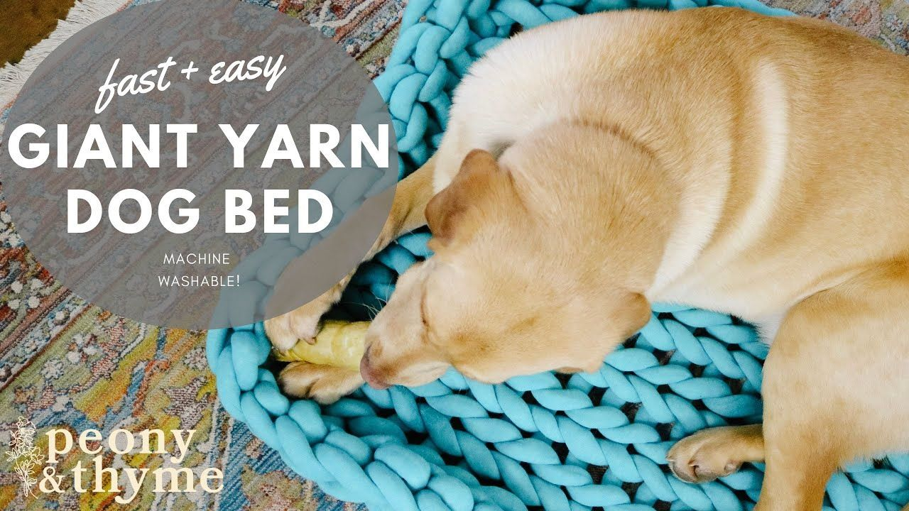 How to Knit a Giant Yarn Dog BedMachine Washable