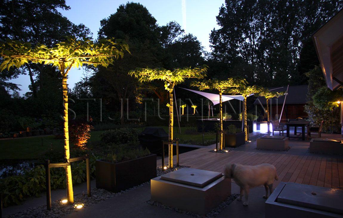 Moderne tuinen villatuin oostvoorne met zwembad stijltuinen