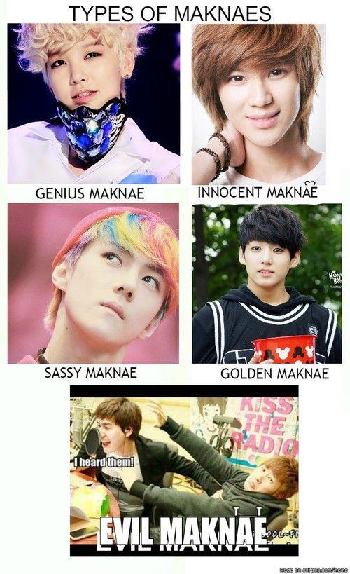 Types Of Maknaes Kpop Memes Kpop Memes Bts Kpop Funny