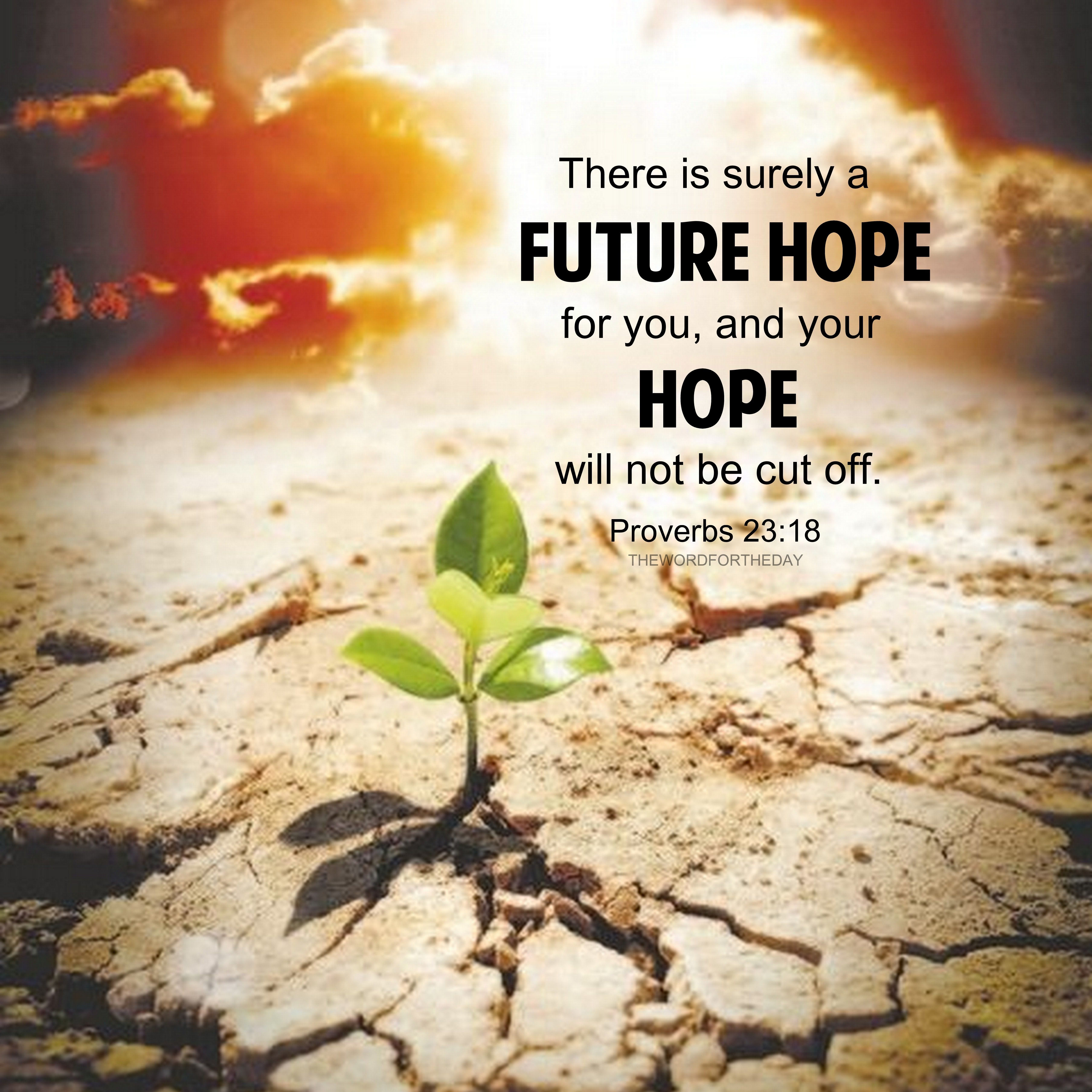Bible Quotes About Hope BIBLE VERSE, BIBLE QUOTES, HOPE QUOTES, THE WORD FOR THE DAY  Bible Quotes About Hope