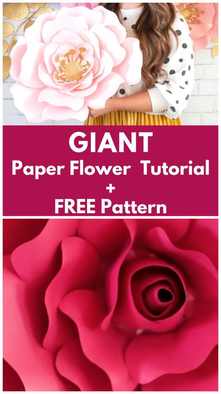 How to Make Large Paper Flowers   Crafts   Sweet Red Poppy