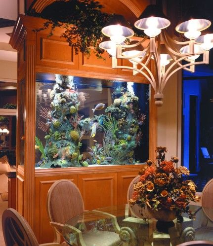 Lovely wood framed aquarium fish tank used as a room divider