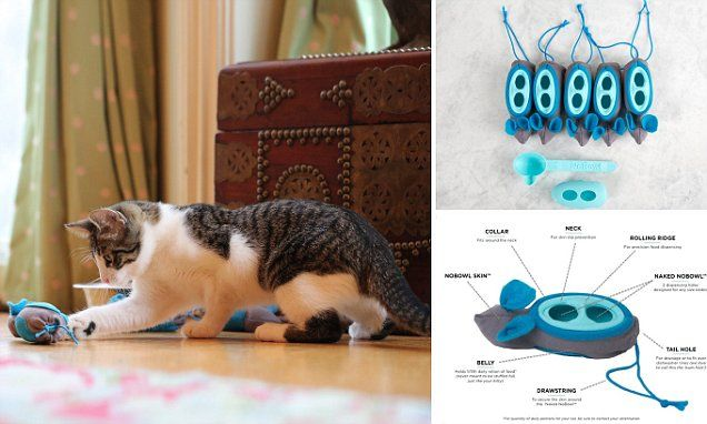 Squishy mouse-shaped food pods force lazy cats to hunt for dinner