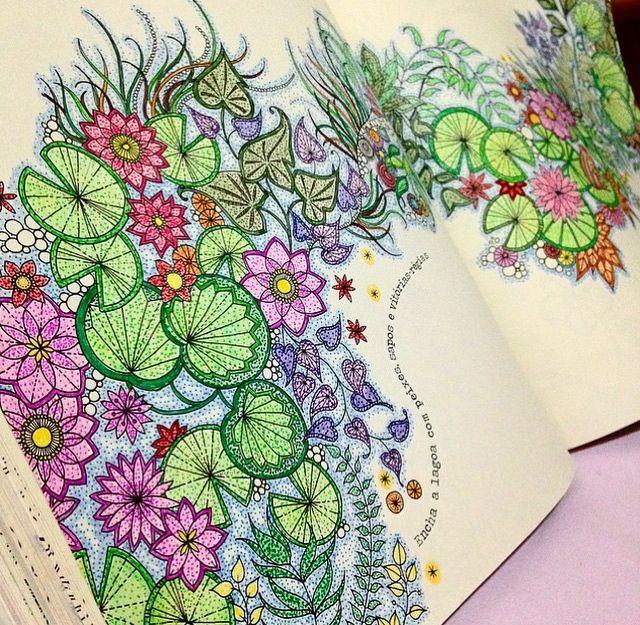 Jardim Secreto Secret Garden Coloring BookSecret BookColouring