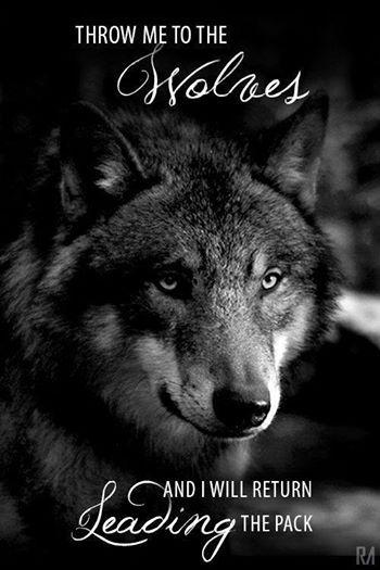 Қɽα₰ ɽyեiҽɽφv Lone wolf quotes