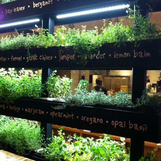 Happy friday herbs garden and gardens