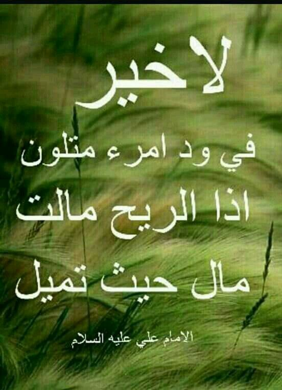 Pin By Bassam Alnoury On الصداقة معنى وليست كلمه فقط Funny Arabic Quotes Ali Quotes Arabic Quotes