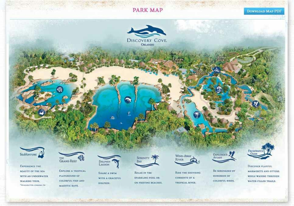 Discovery cove park map dolphins pinterest cove fc discovery cove park map gumiabroncs Choice Image