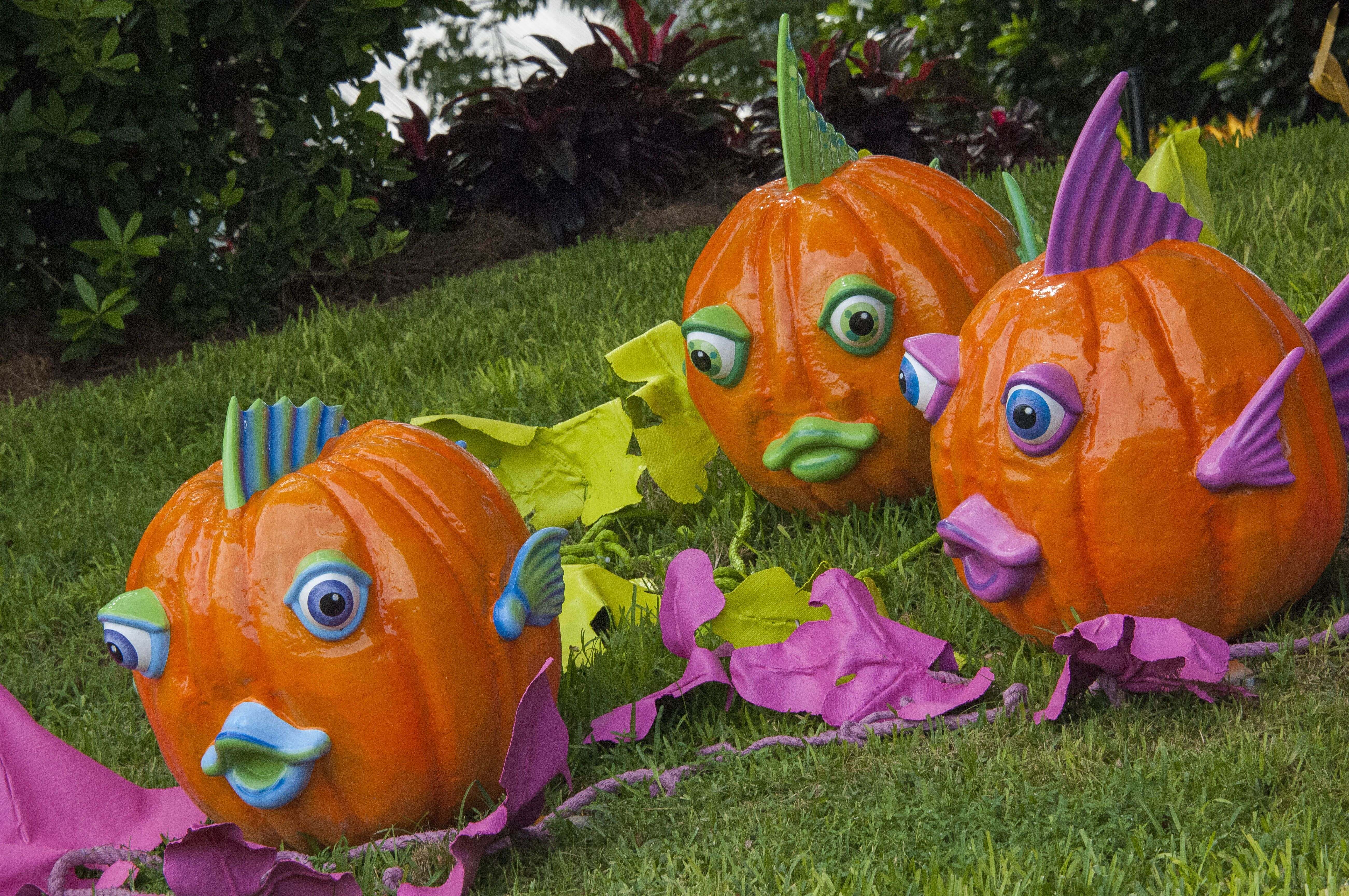 SeaWorld Halloween Pumpkins