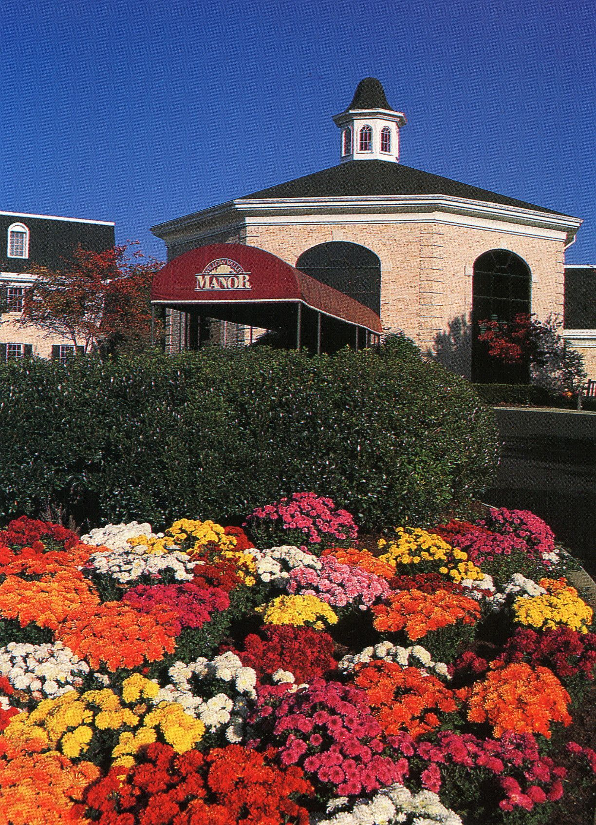 Beautiful Flowers Outside The Entrance Of Manor Manor Apartments Manor Residences