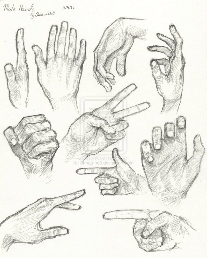 Male Hand Anatomy By 0imaginc0 On Deviantart How To Draw Hands Anatomy Drawing Body Sketches