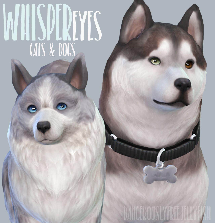 Whisper Eyes Cats Dogs Defaults By Dangerouslyfreejellyfish