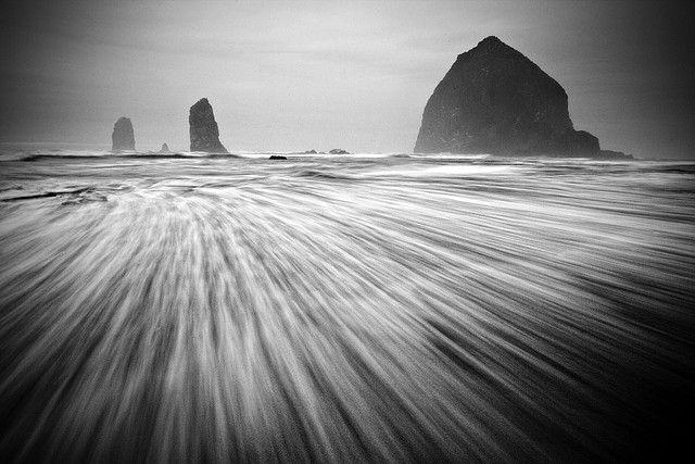 Cannon Beach by Sheldon Nalos