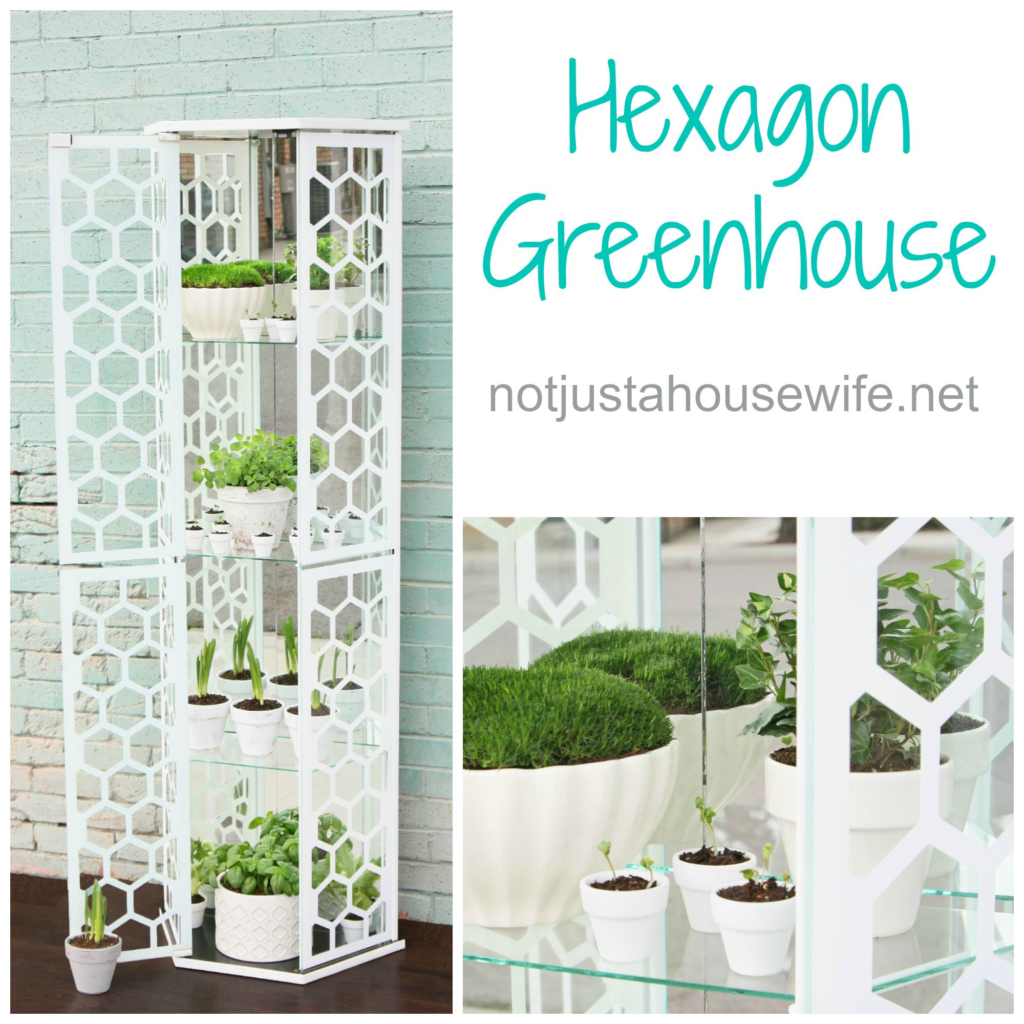 How to make a greenhouse out of an old curio cabinet #hexagon | Home ...