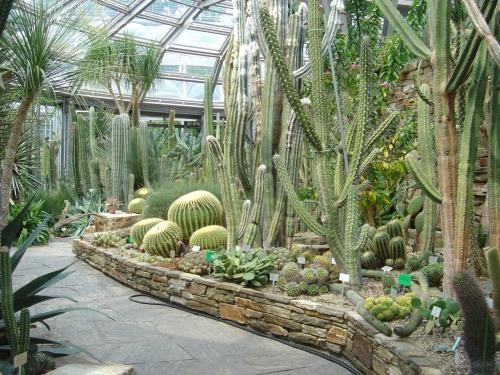 Botanischer Garten Und Botanisches Museum Berlin Dahlem Garden Pests Plant Breeding Garden Pest Control