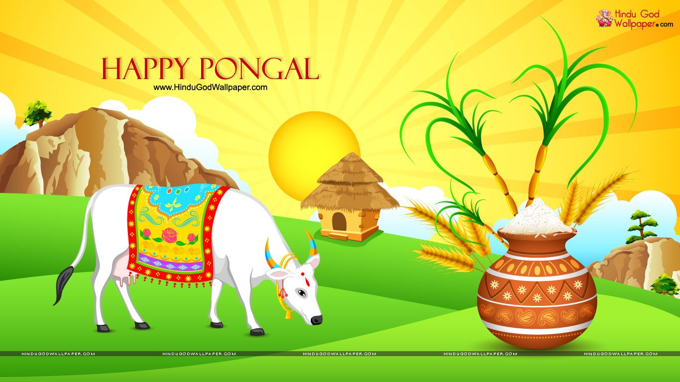Free mattu pongal wallpapers download pongal wallpapers free mattu pongal wallpapers download pongal wallpapers pinterest mattu pongal m4hsunfo Gallery