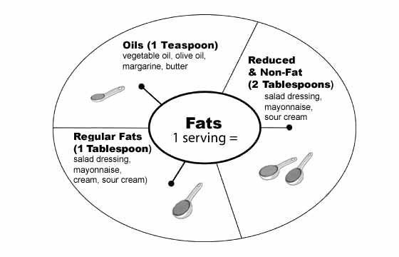 DASH - DASH for Health Basics,                              …