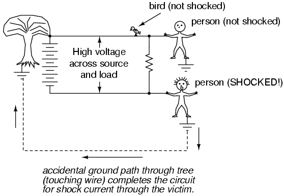 Electrocution | Electrical | Electric circuit, Electrical