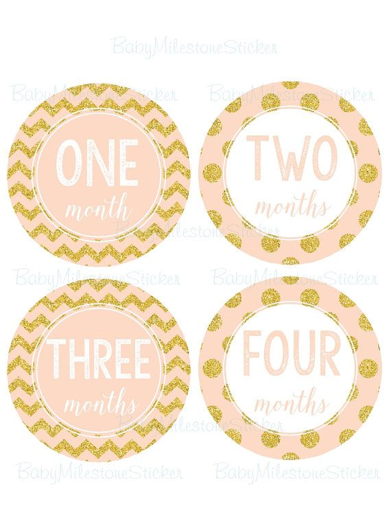 18 Month Stickers: GIFT, Baby Girl Monthly Stickers, Month Baby Girl Stickers