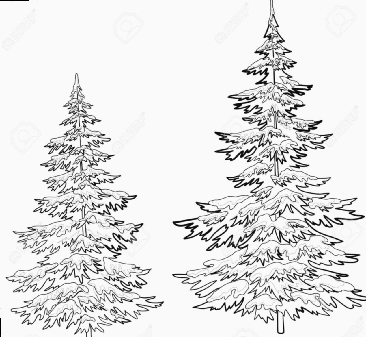 Christmas Tree Drawing Realistic Christmasgifts Christmasdecor Christmasdecorations In 2020 Tree Drawings Pencil Christmas Tree Drawing Tree Drawing