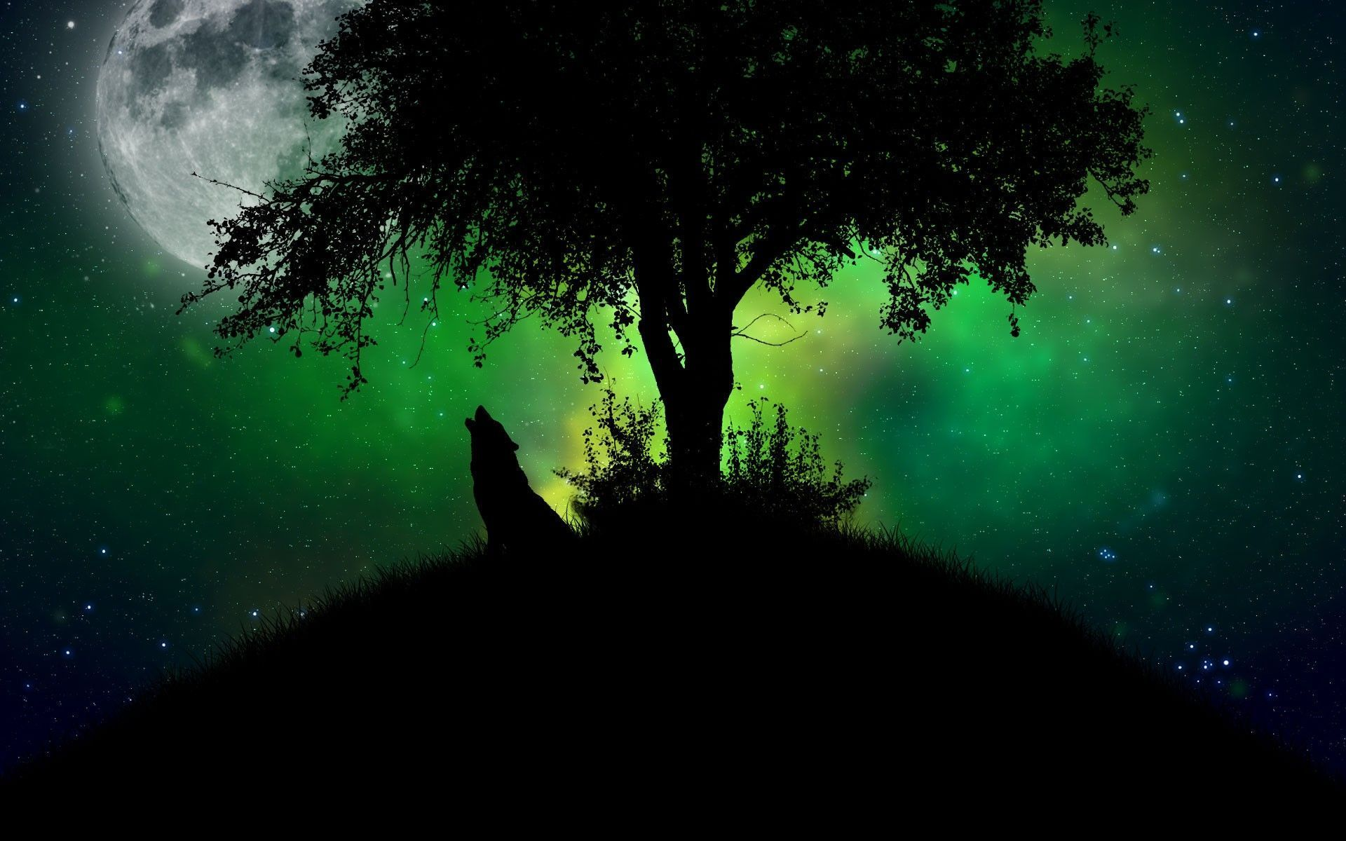 Wolf get more covers dps and wallpapers places to visit - Wolf howling hd ...