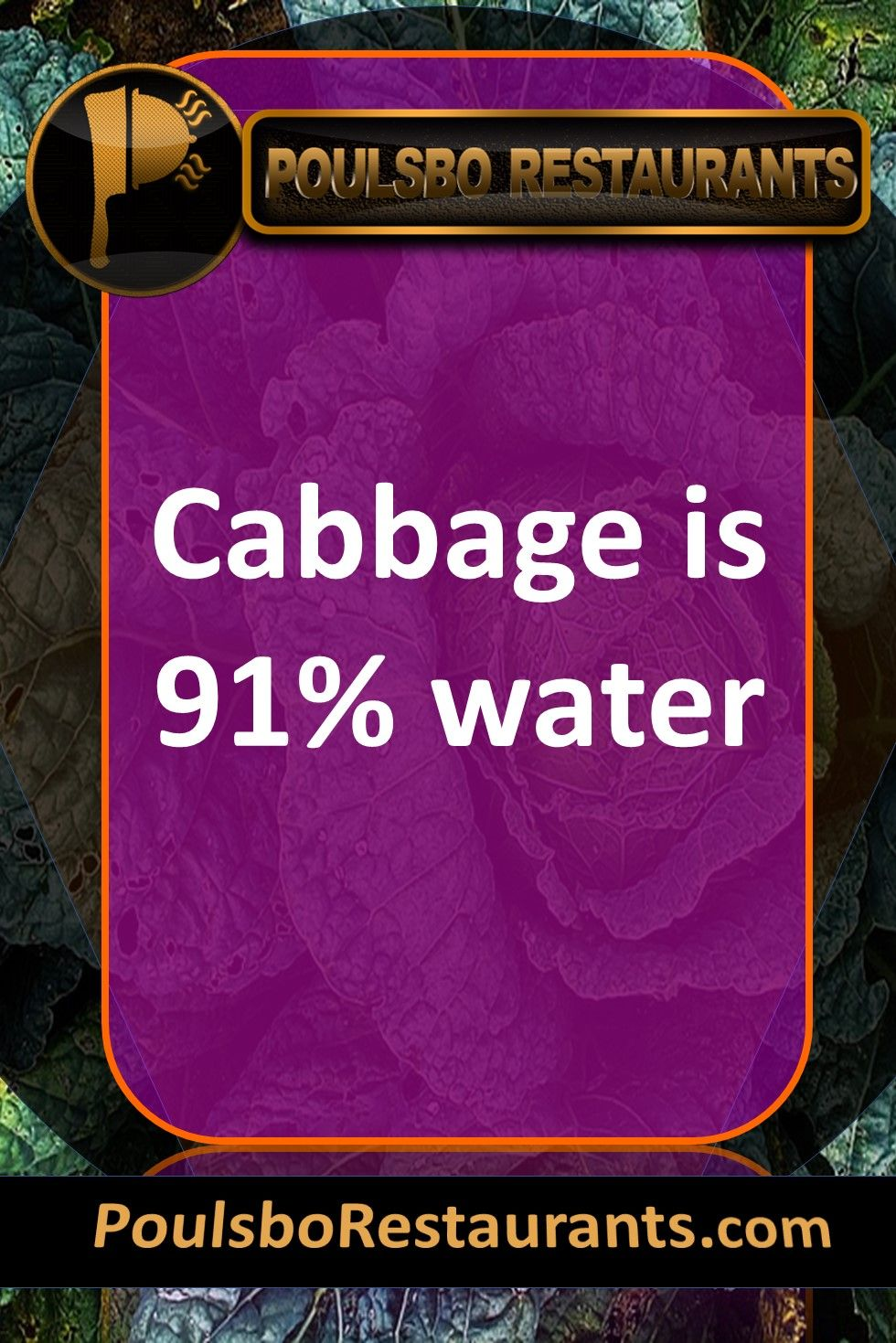 Cabbage Is 91 Water Food Fact Presented By Poulsborestaurantscom