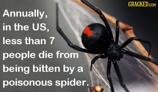 25 Real Facts That Make Common Fears Way Less Scary | Cracked.com