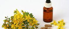Conheça Quais São Os Antidepressivos Naturais - http://comosefaz.eu/conheca-quais-sao-os-antidepressivos-naturais/