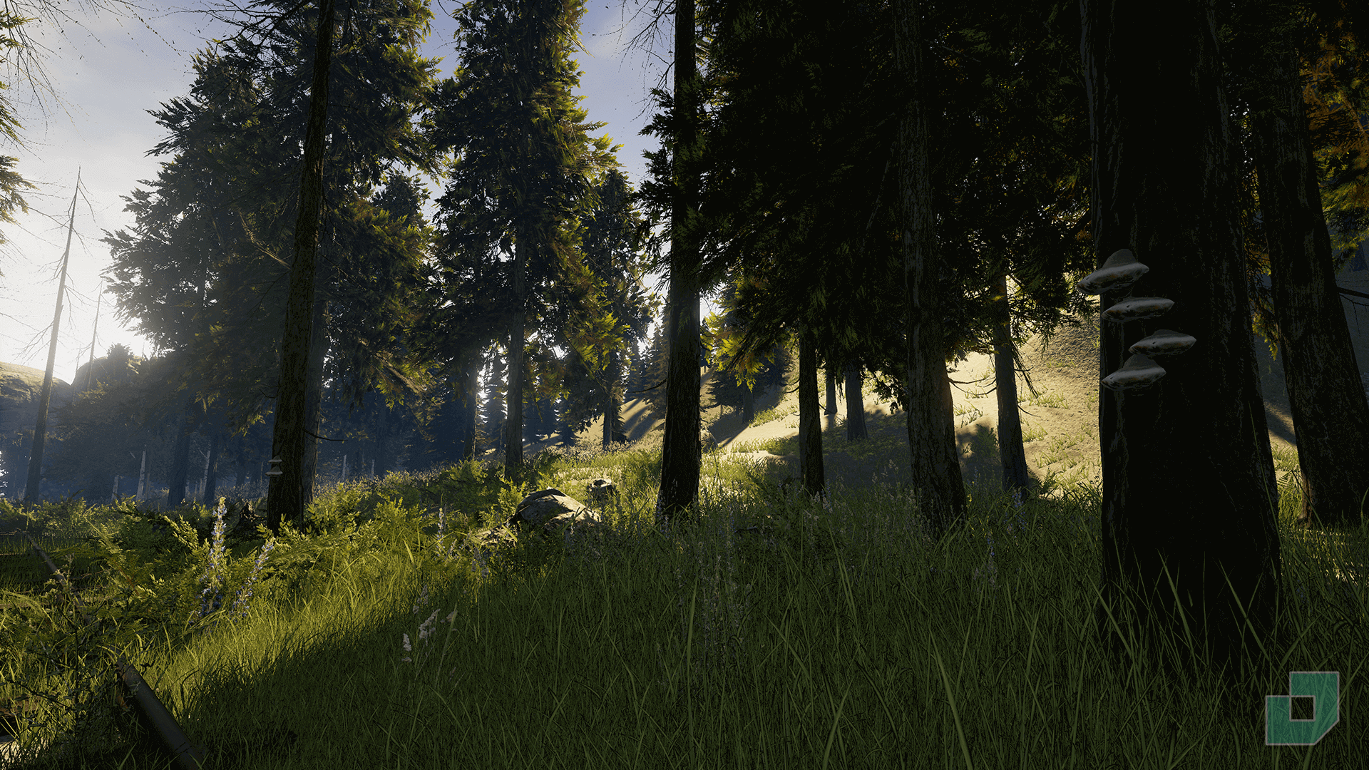 Low Poly Foliage Forest Pack by Dokyo in Environments - UE4