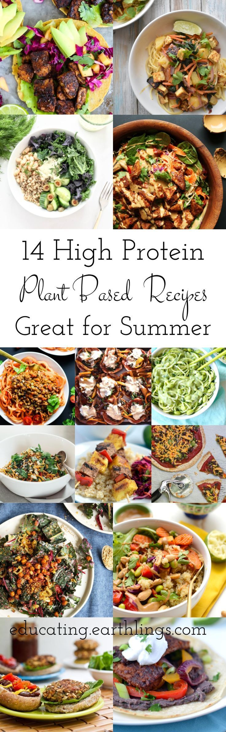 Photo of 14 High Protein Plant Based Recipes • Educating Earthlings