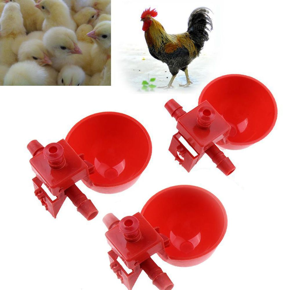 10pcs Poultry Chicken Coop Feeder Automatic Water Drinking Cup Bowl Fowl Drinker Chickenhouse Chickencoopplan Chicken Bird Backyard Poultry Chickens Backyard