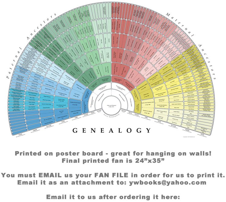 create a genealogy fan then have it printed wonderful not just