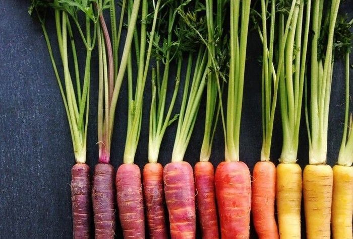 Rainbow Carrots Wright Kitchen
