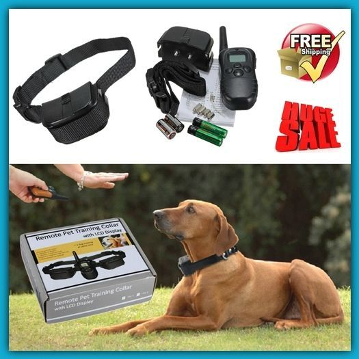 Best Dog Training Collar With Remote Stop Barking Pet Behavior