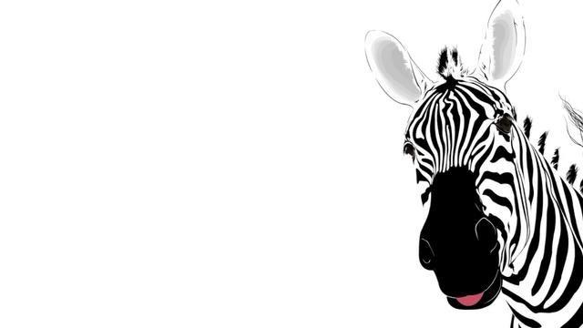 Zebrawedding Main Page Video By Brandon Hill Animal Wallpaper Animal Drawings Zebra Art