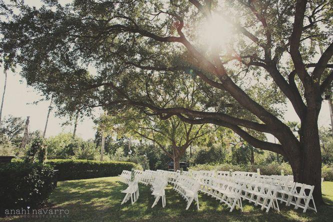 Quinta Mazatlan Wedding